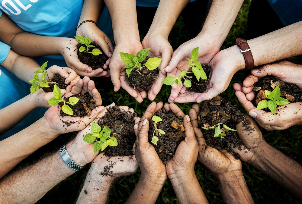 group of people holding plants | Pivot HR Services