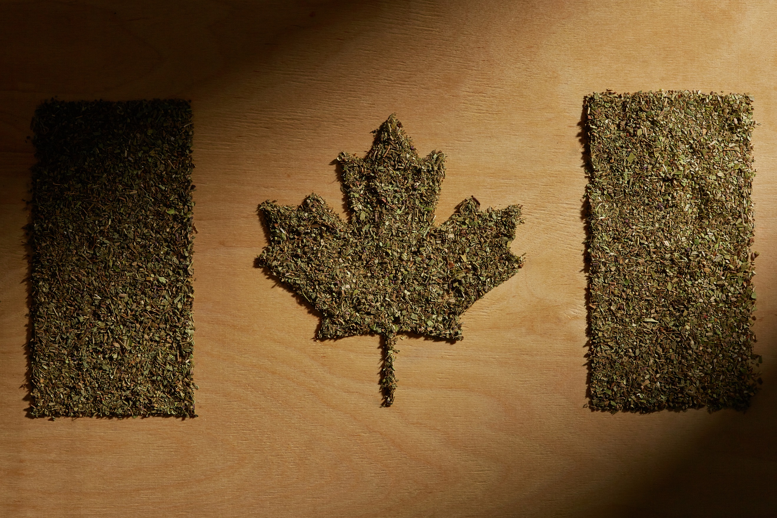 marijuana legalization and the Canadian workplace
